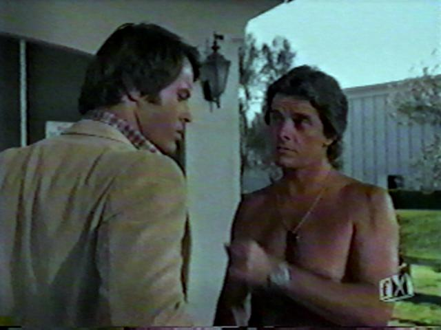 Robert Urich and Peter Brown